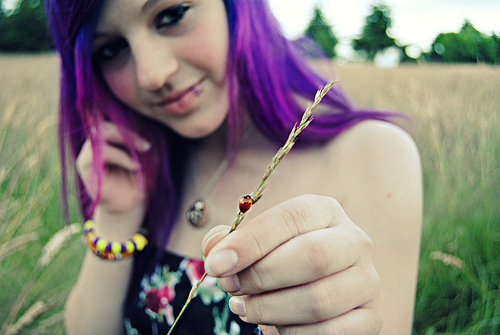 Ladybug by rini-love