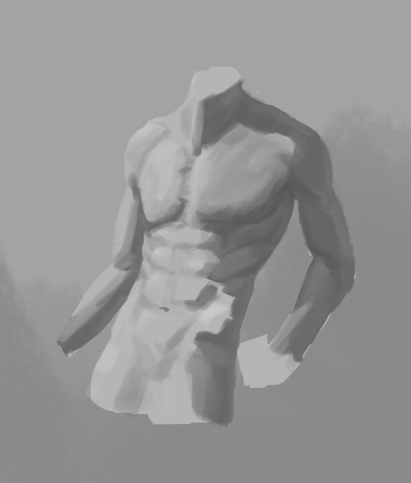Male torso study by Ereyod