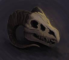 Dragon Skull by Akoriel