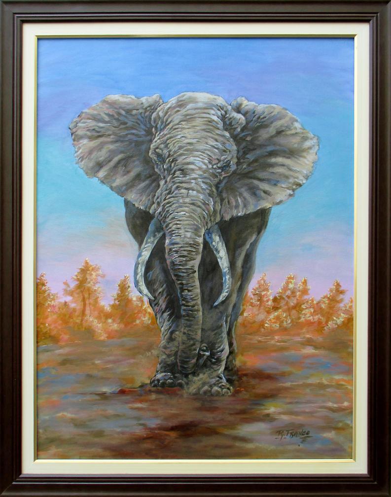 Elefante by ricardoafranco