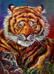 07 - Tigre cor 50x70 by ricardoafranco