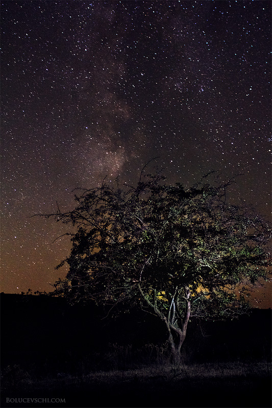Пейзаж молдова мастер-класс уроки звёзды