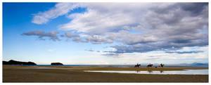 Horse Ride by bethwaukee