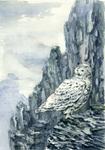 -Postcrossing: Snowy Owl-