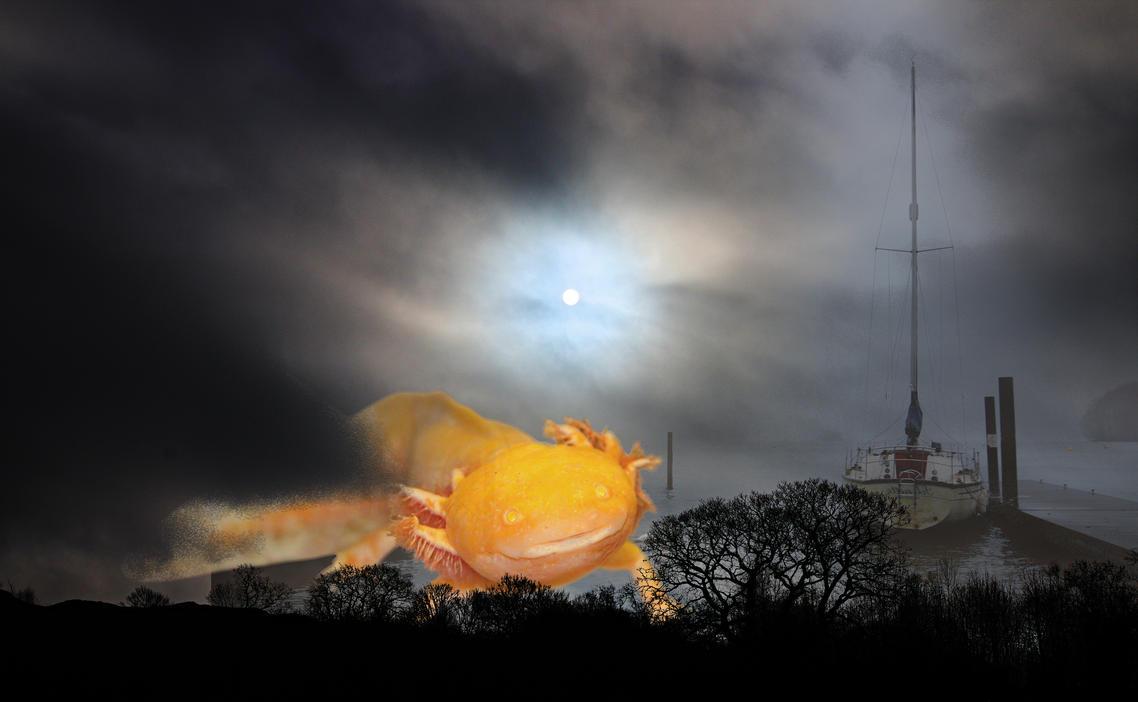 The land of the midnight sun by aglezerman