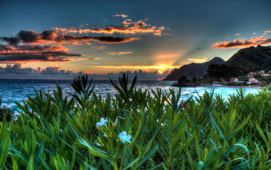 Sunset by aglezerman