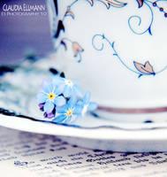 Tea for Two by EShorizon