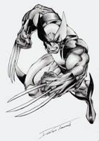 X-Men Wolverine by LukiSkajPlotek