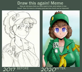 Before and after 2017 - 2020 Girl Scout