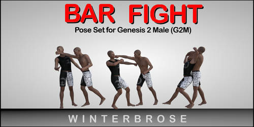 Bar Fight Poses G2M - Scene 03 by Winterbrose-AandG