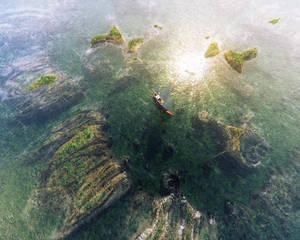 13-06-17 Fractal coral reef