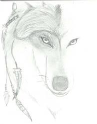 Wolf Eyes by EchoLeopard