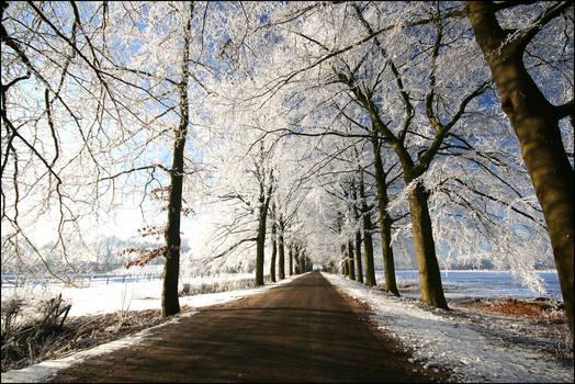 Winterwondeland in Holland VII