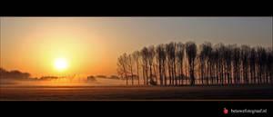 The fog 1 by Betuwefotograaf