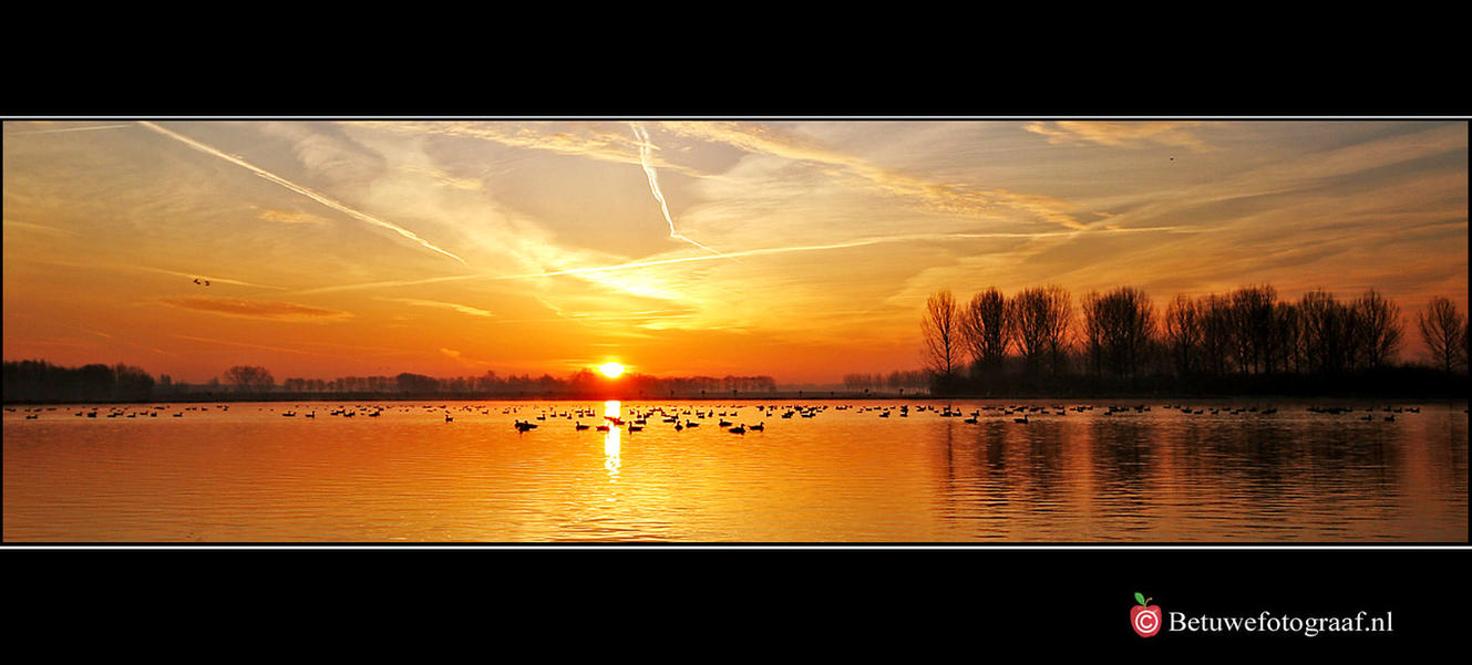 The early bird catch the early by Betuwefotograaf