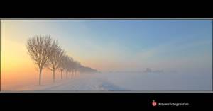 Winter Wonderland XV by Betuwefotograaf