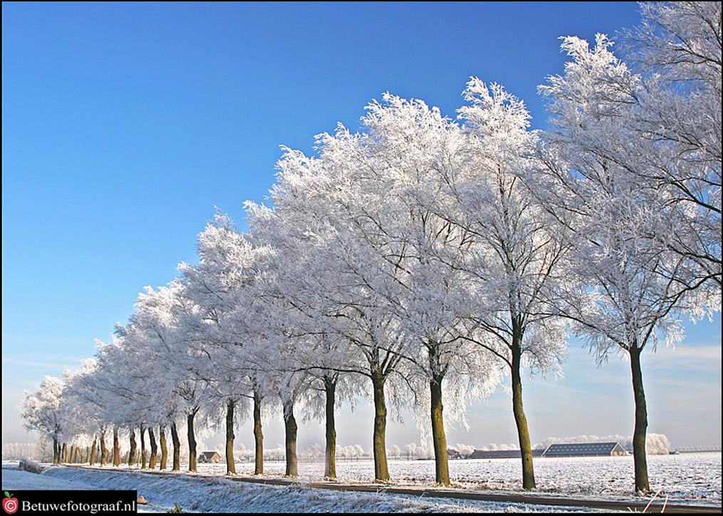 Winter in Holland XX by Betuwefotograaf