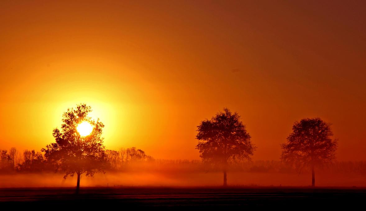 The morning light. by Betuwefotograaf
