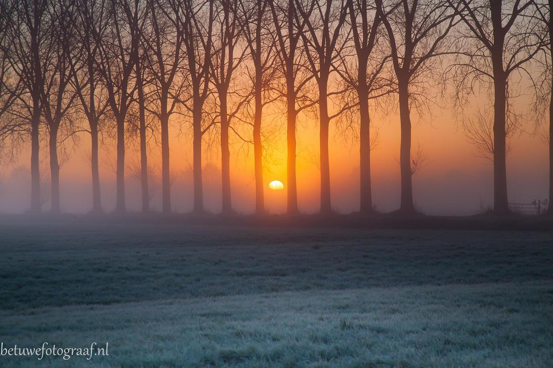 Gates to light by Betuwefotograaf