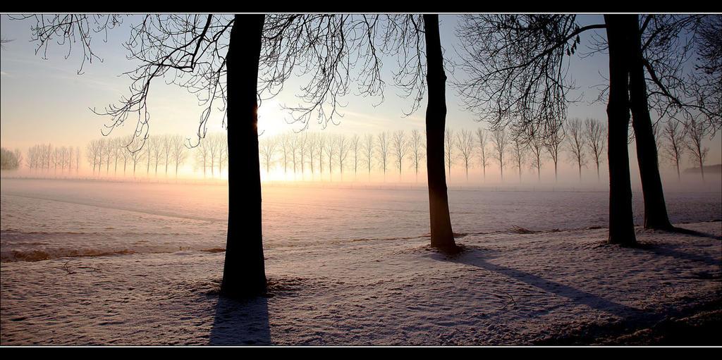 The Breath of Winter by Betuwefotograaf
