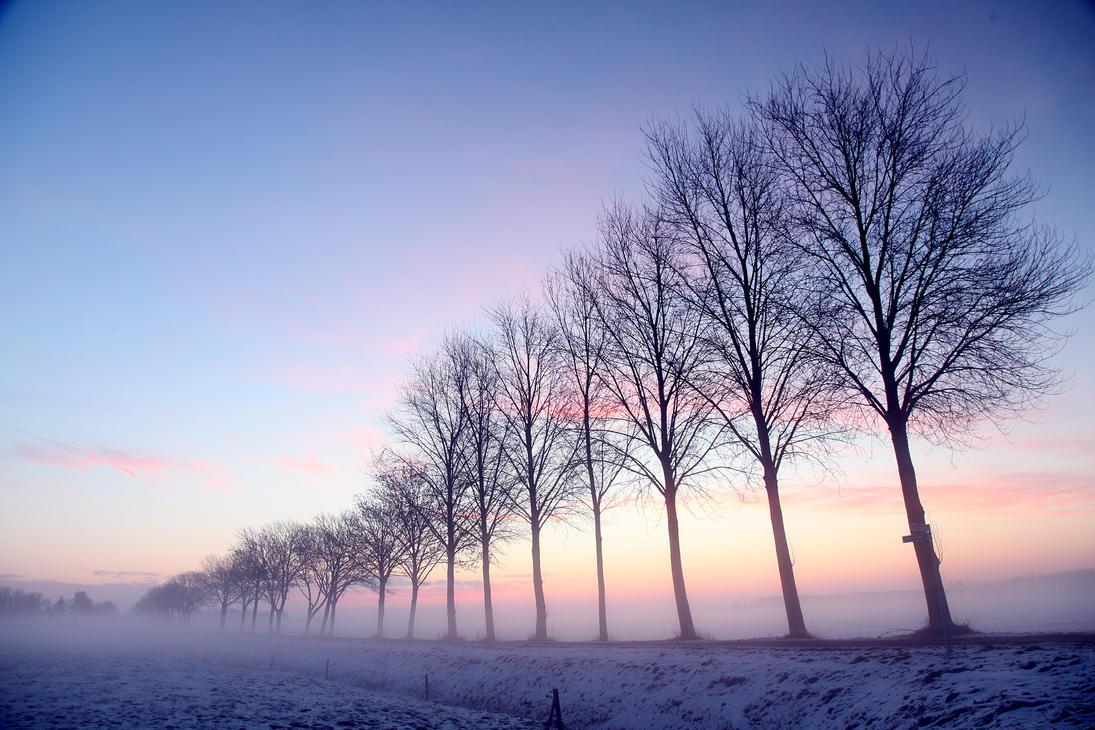 Simply Serene by Betuwefotograaf