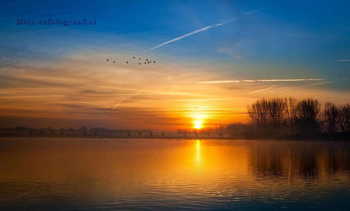 Silence is Golden and......... by Betuwefotograaf