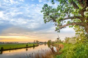 Hollands Glorie........... by Betuwefotograaf