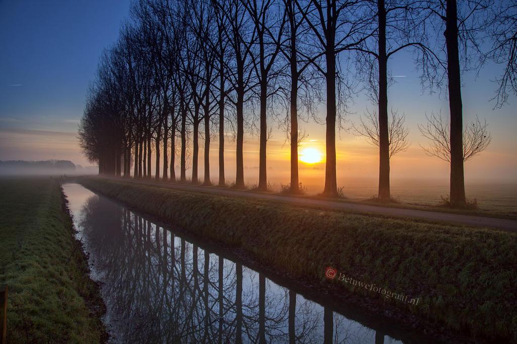 Foggy Autumn morning......... by Betuwefotograaf