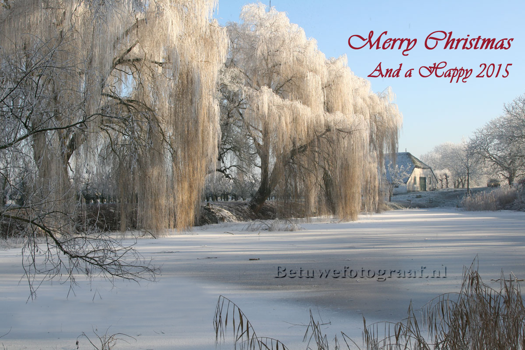 Merry Christmas and a Happy New-year by Betuwefotograaf