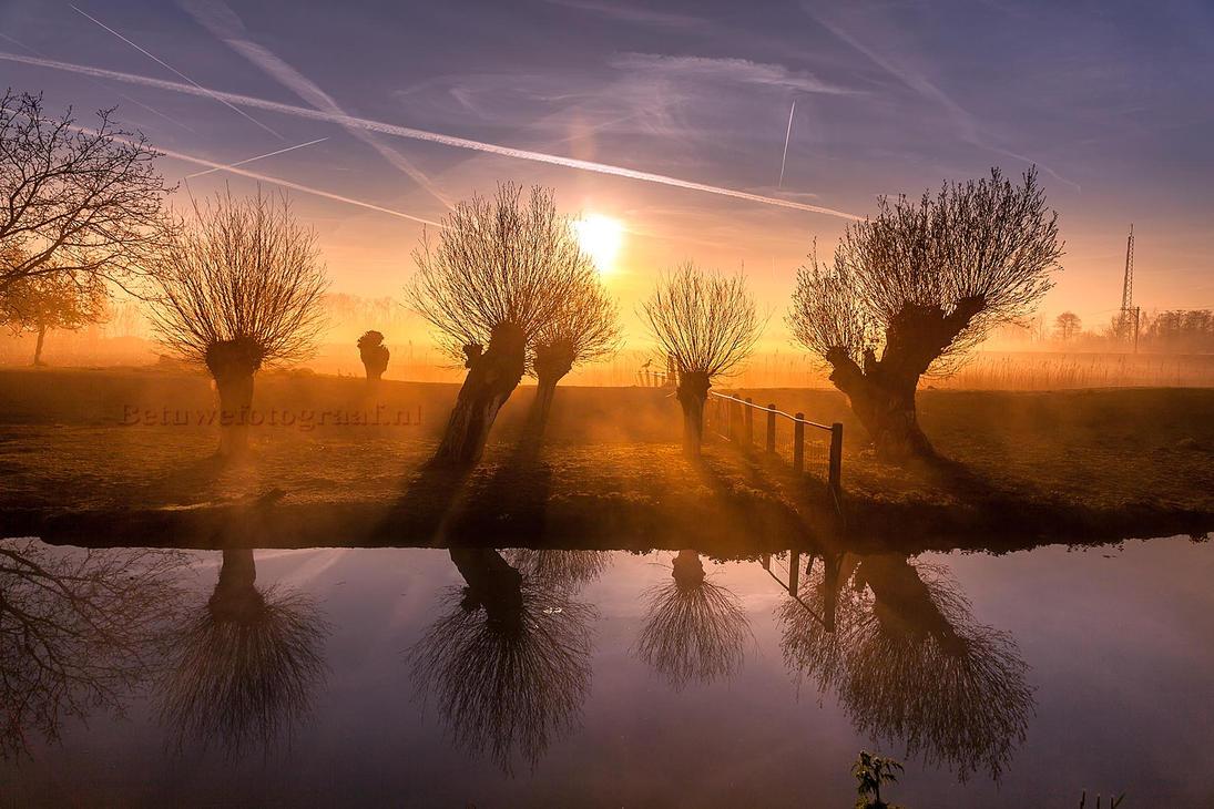Awakening.......... by Betuwefotograaf