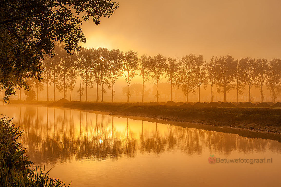 I love the morninglight.............. by Betuwefotograaf