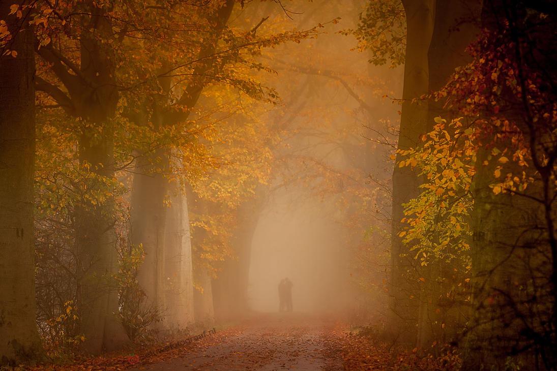 Lovers' Silhouettes in the Mist! by Betuwefotograaf