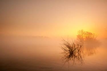 Transquility......VII by Betuwefotograaf