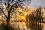Misty sunrise on the river the Linge ( Betuwe )