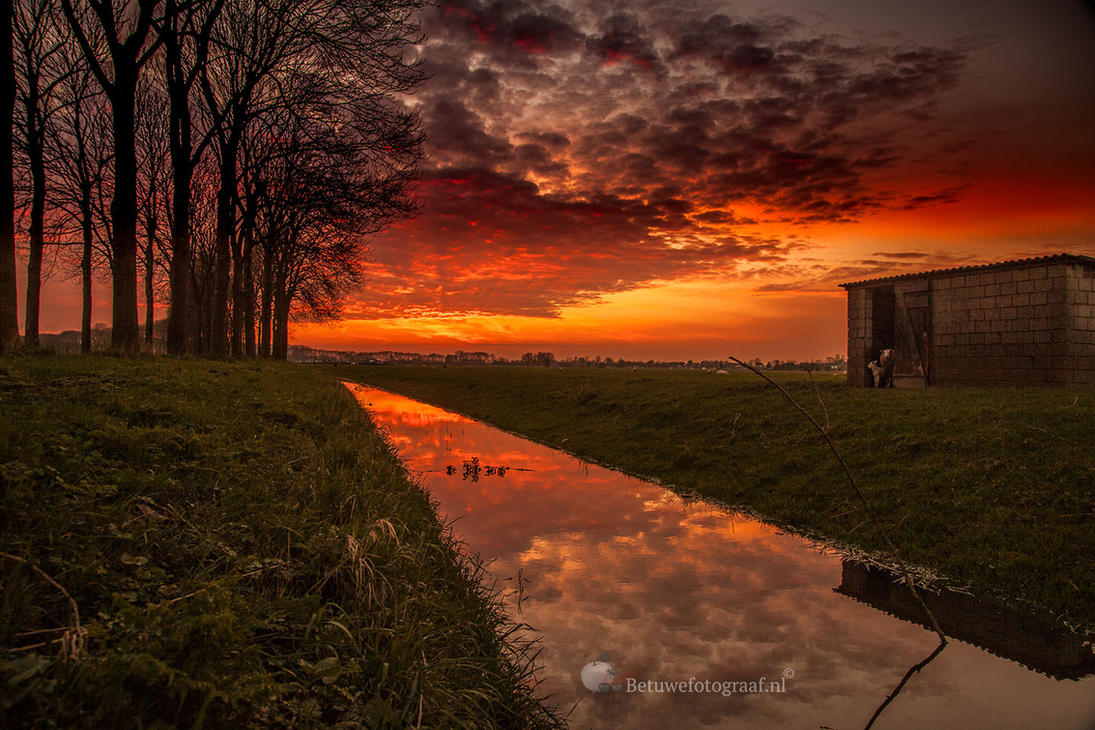 Give me a title......? by Betuwefotograaf