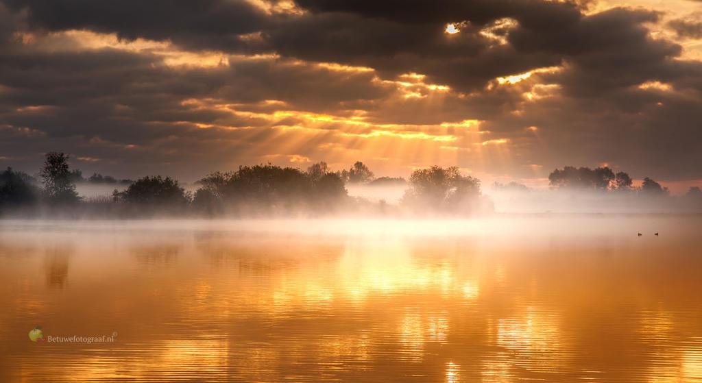 Silence is Golden by Betuwefotograaf