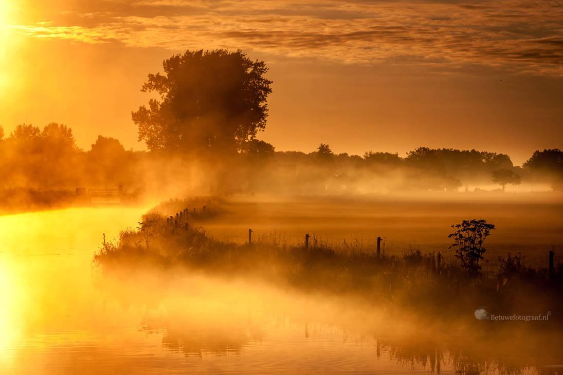 Silence is Golden ............ by Betuwefotograaf