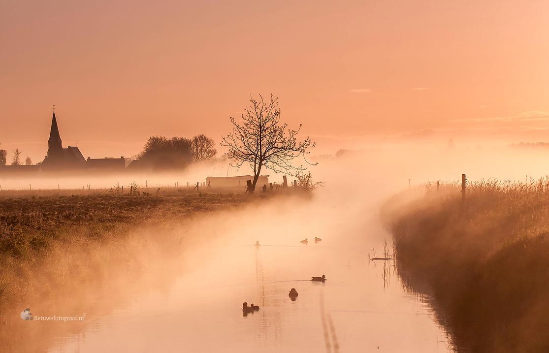 Enlightment by Betuwefotograaf