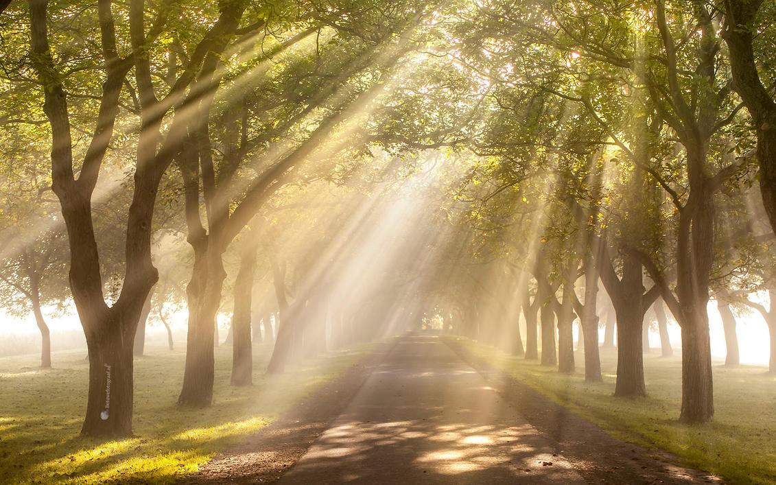 Heavens gate........... by Betuwefotograaf