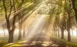 Heavens gate...........