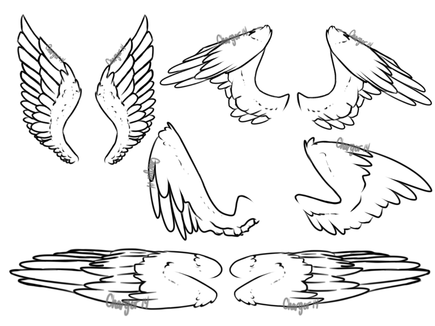 Wings / practice  by Chargerwuvsstarbucks