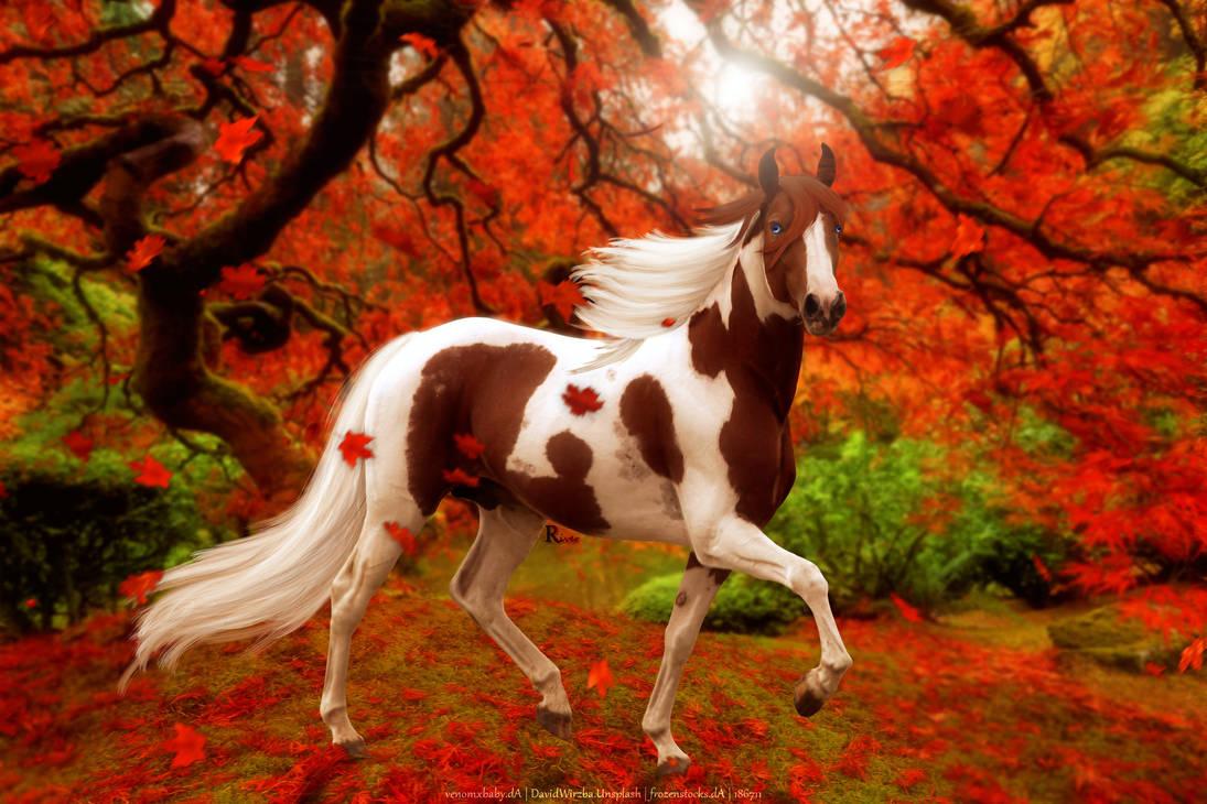 Autumn Paint Full Image