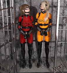 Commission - Rachel Gets a Cellmate by MartyMartyr1