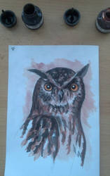 Owl by alicegallery