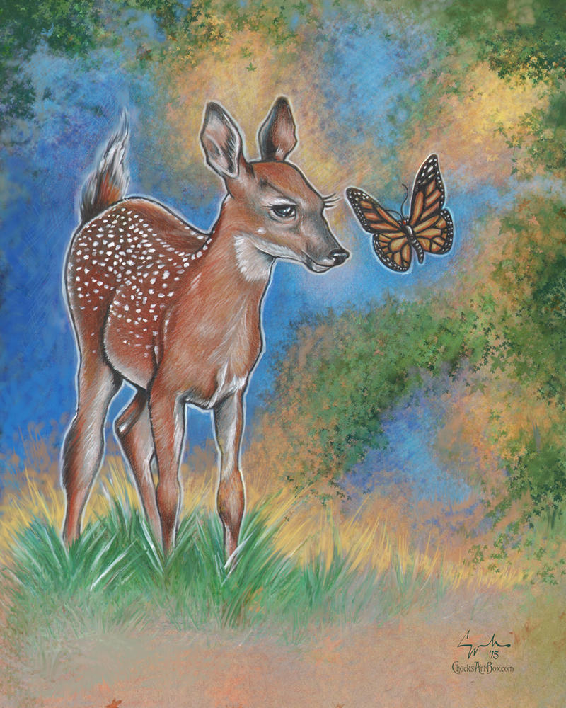 Bambi Butterfly by ChuckMullins