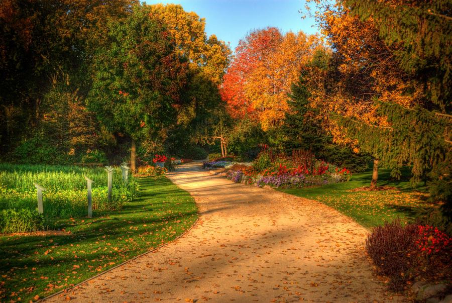 Autumn Road in WI by jazzkidd