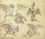 Historical Dragon Sketches