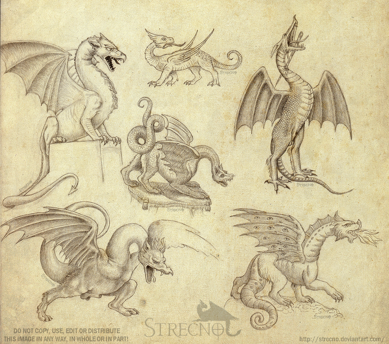 Historical Dragon Sketches by Strecno