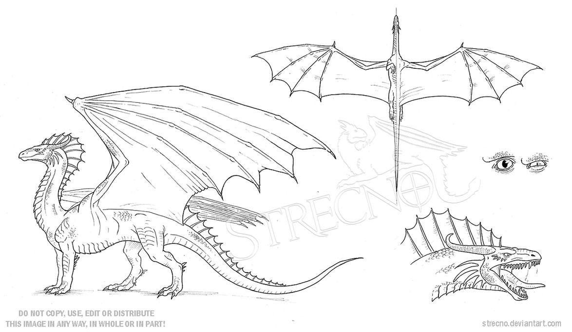 Character Design Template Deviantart : Dragon character sheet template by strecno on deviantart