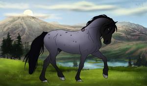 DiRPG Colby Lead Stallion